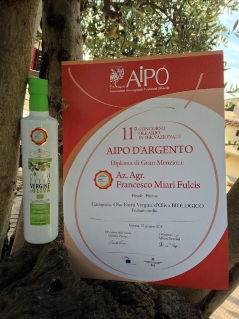 aipo dargento