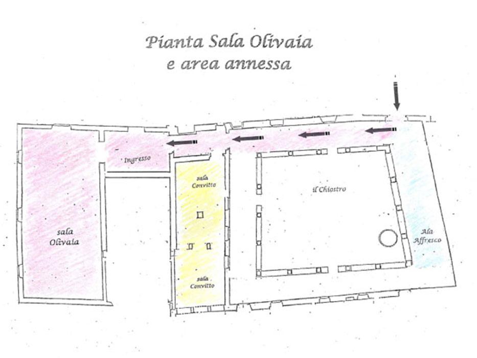 pianta_sala_olivaia