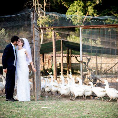 Matrimoni 3